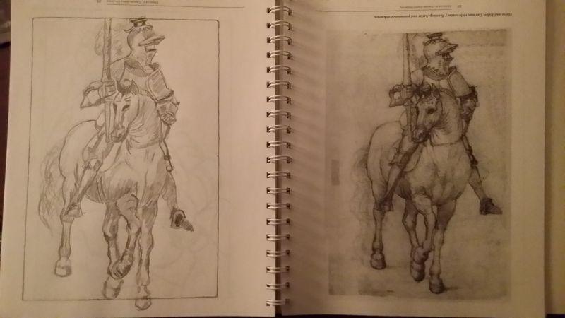 Horserider13016